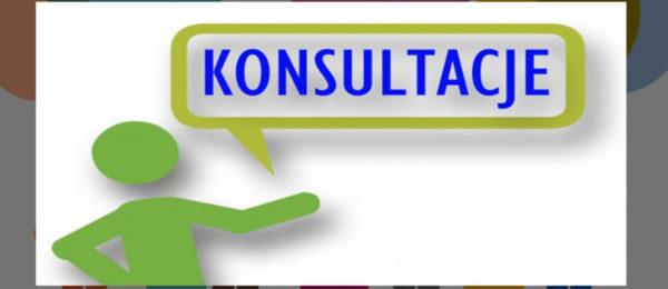 Harmonogramy konsultacji uczniów i zajęć praktycznych 3 BS